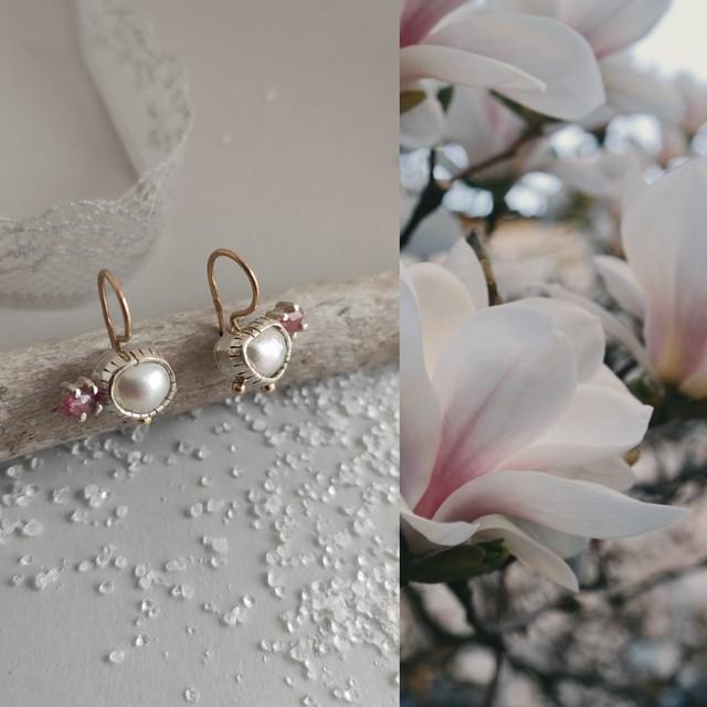 *magnolija*